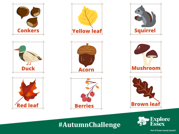 Can you spot these seasonal sights in our autumn challenge?