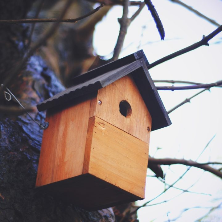 Nesting Box