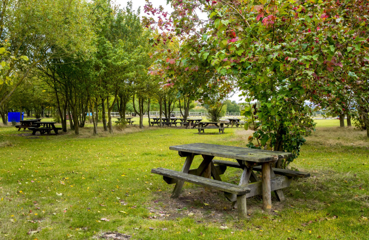 A picnic area with tables