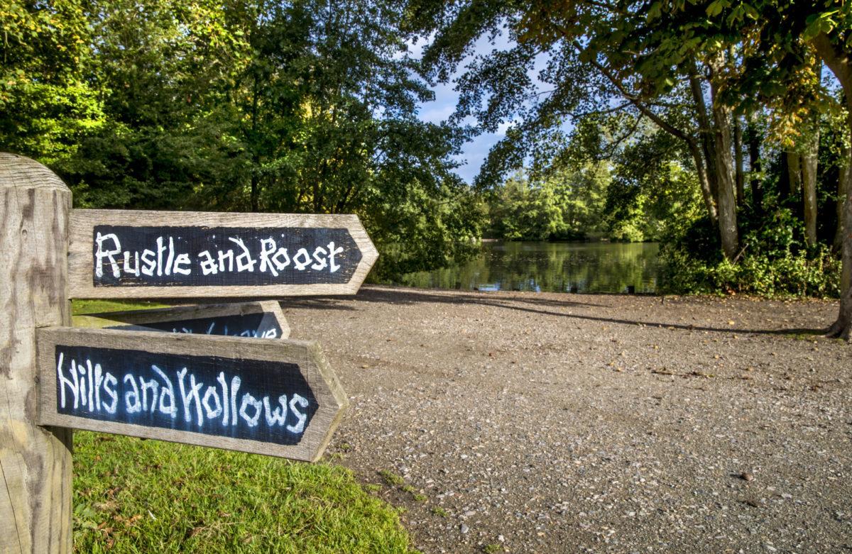 A signpost near path alongside a lake and trees