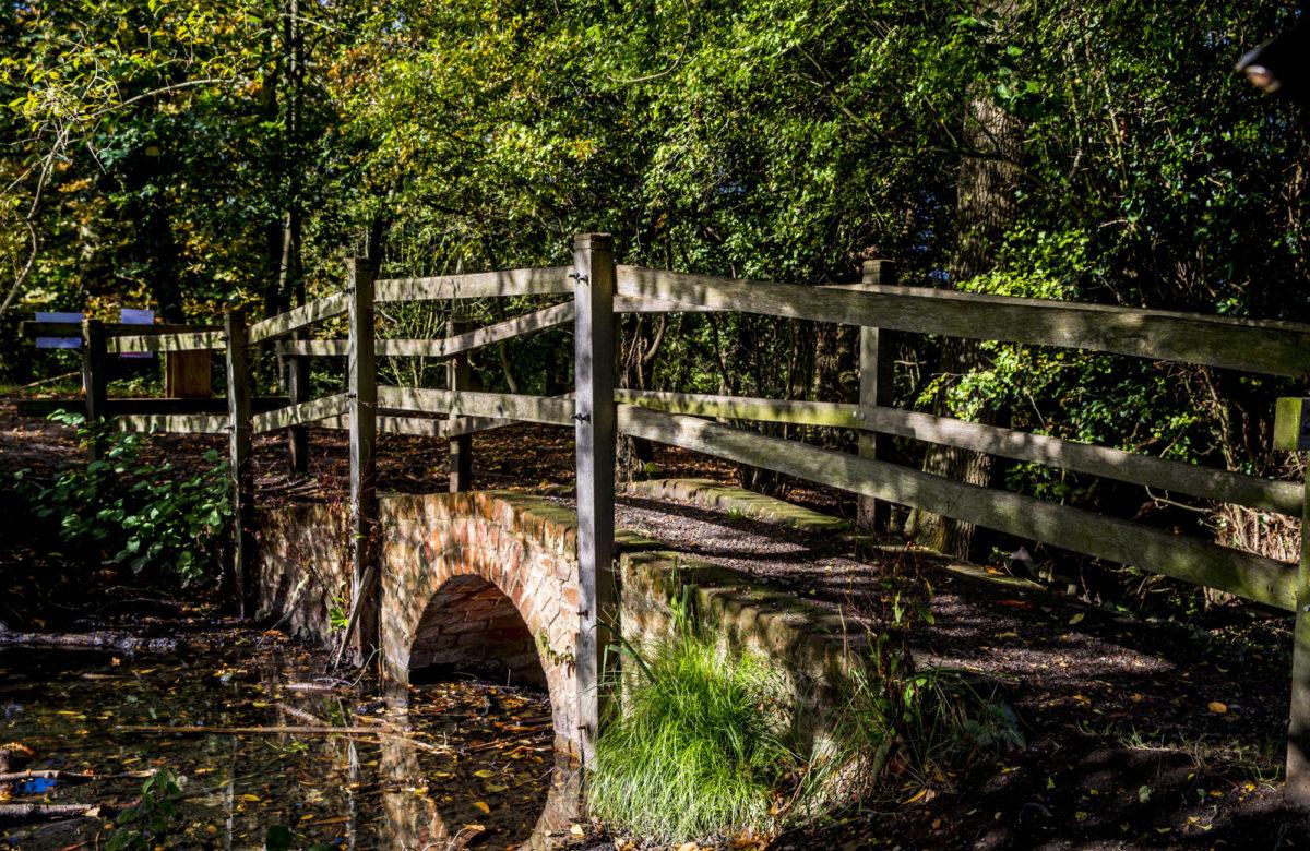 A small bridge over a river