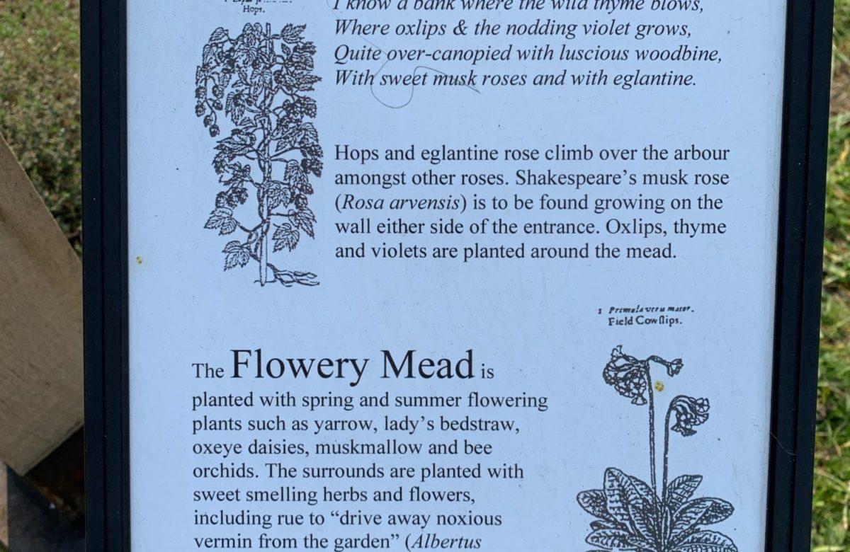 An information board describing plants