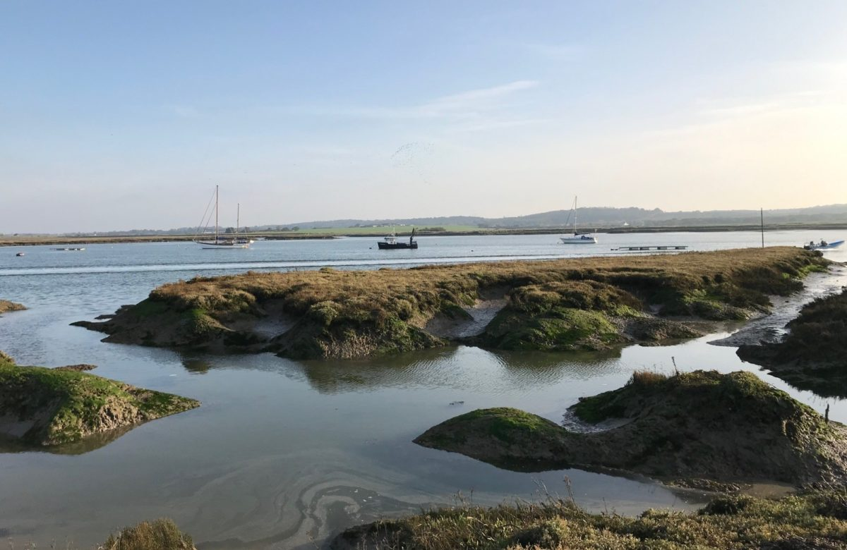 Inlets on the river Crouch at Marsh Farm