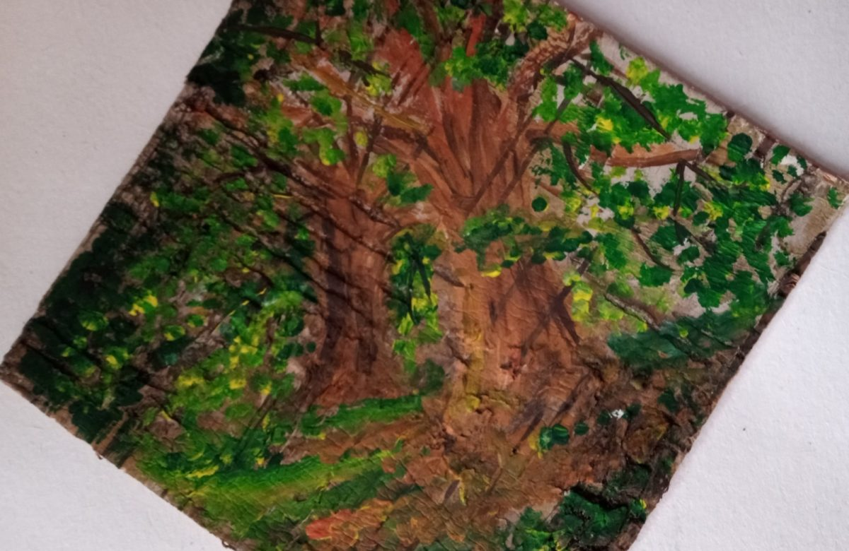 Entry by Sarah - tree art on hand cut bark