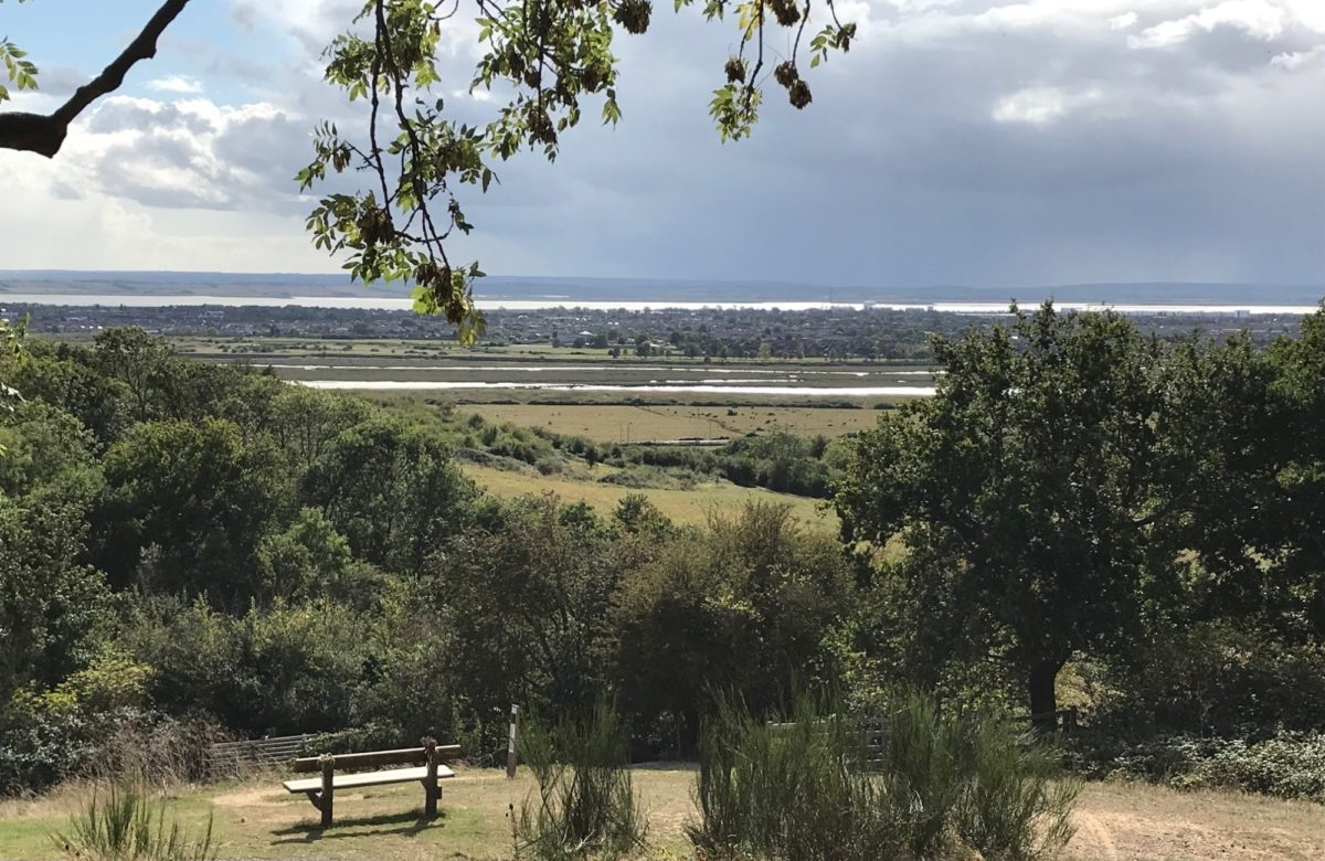 Sweeping vistas accross Canvey Island from Hadleigh Park