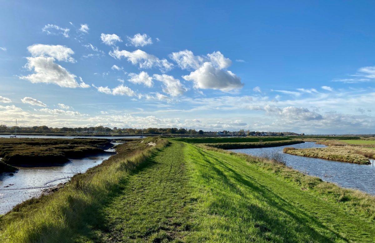 Marsh farm river 3 SF