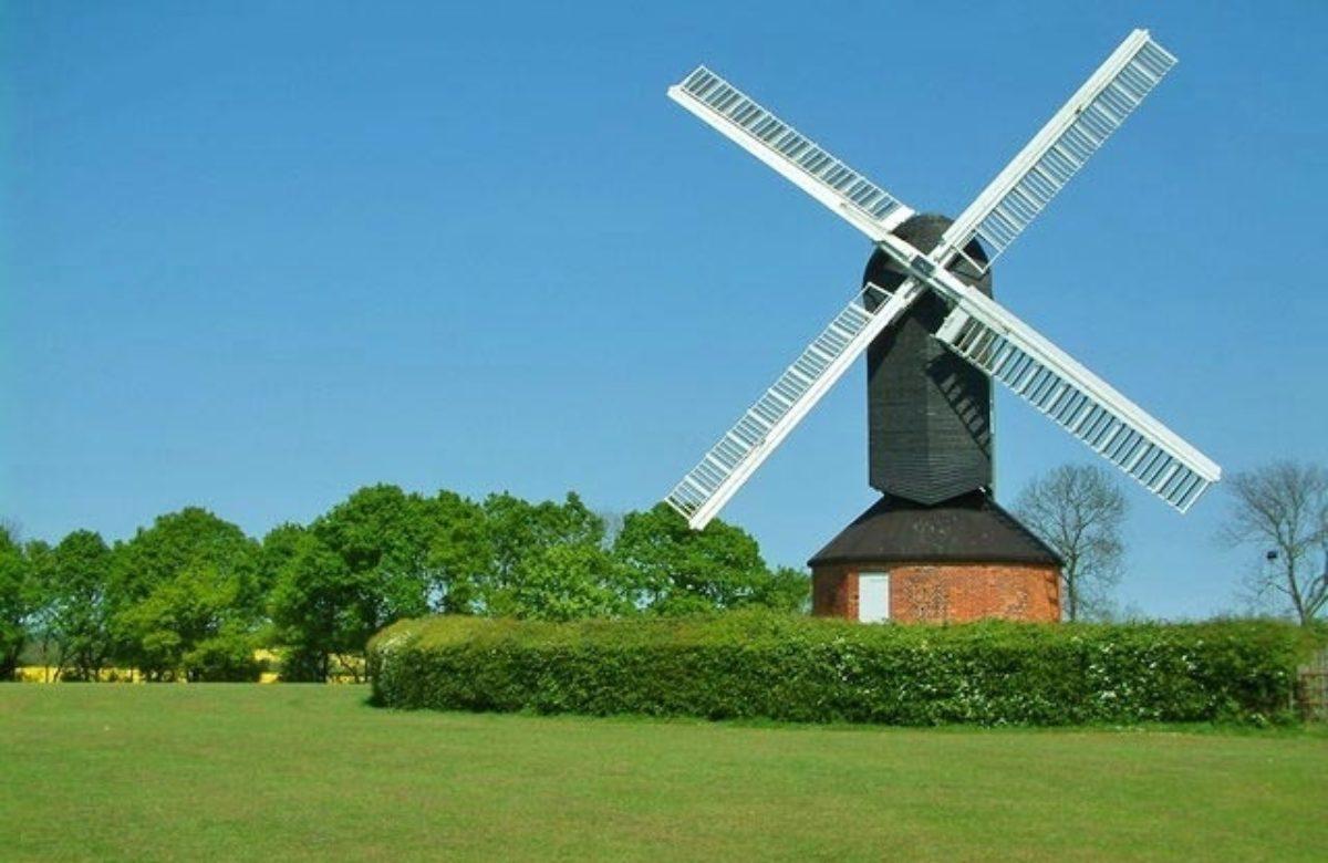 Mountnessing Mill in summer
