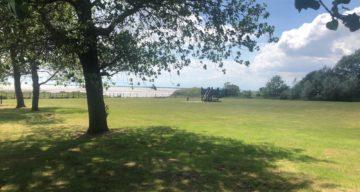 Camping field Mersea 2