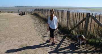 A young girl walking a dog along a beach