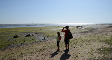 A man and young girl exploring the coast