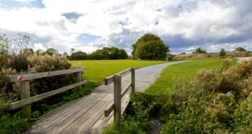 A wooden bridge over a small stream leading to an open grassy area with trees