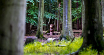A distant shot of a carving of The Gruffalo