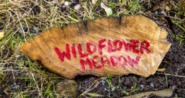 A sign saying Widlflower Meadow