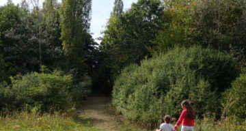 Children on a trail heading into a forest