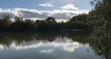 View onto the main lake at Notley