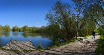 A man walking a dog near a tree-lined lake