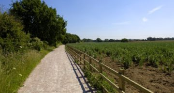 Flitch Way trail and field