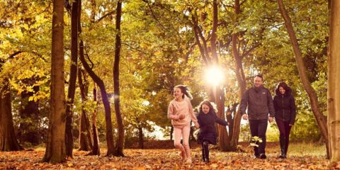A family walking and running through the leafs in a forest