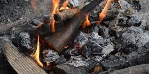 Baby charcoal