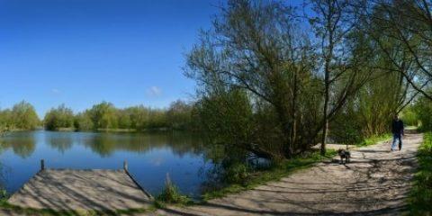Belhus woods jetty lake path dog walker1 440x227