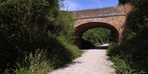 The Flitch Way trail running under a bridge