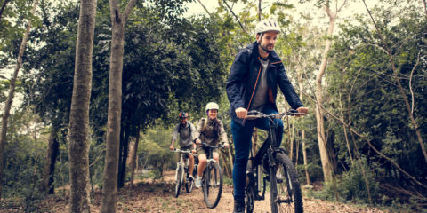 A family of adults on mountain bikes in a forest
