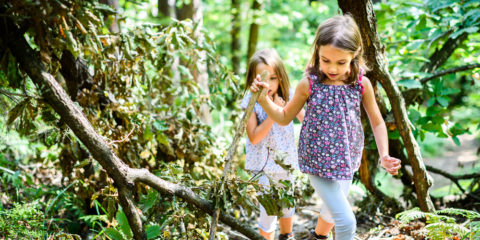 Two young girls exploring a forest